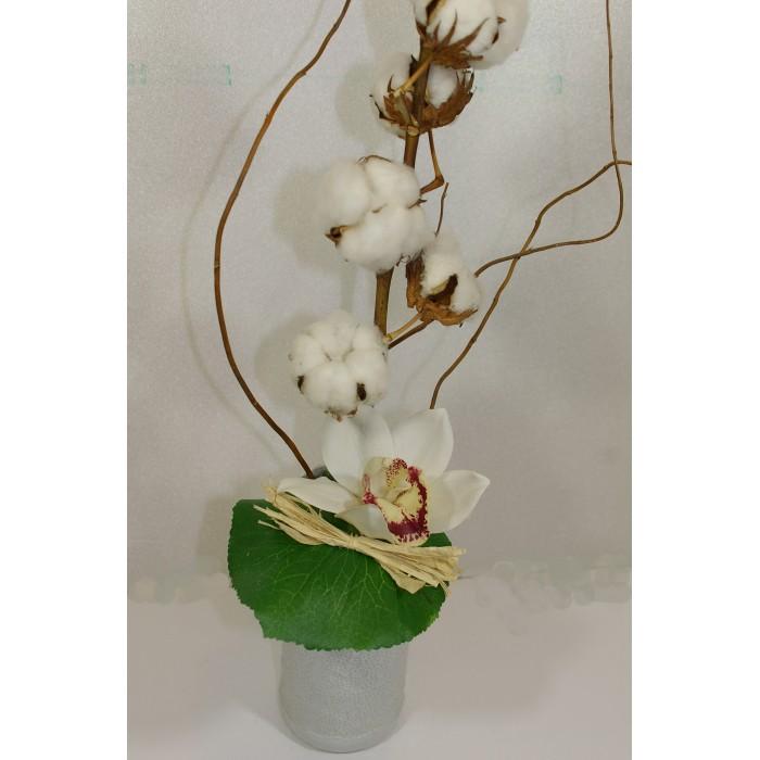 composition coton et orchid e cadeaux pour toi et moi. Black Bedroom Furniture Sets. Home Design Ideas