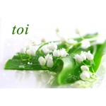 Sets de table - muguet